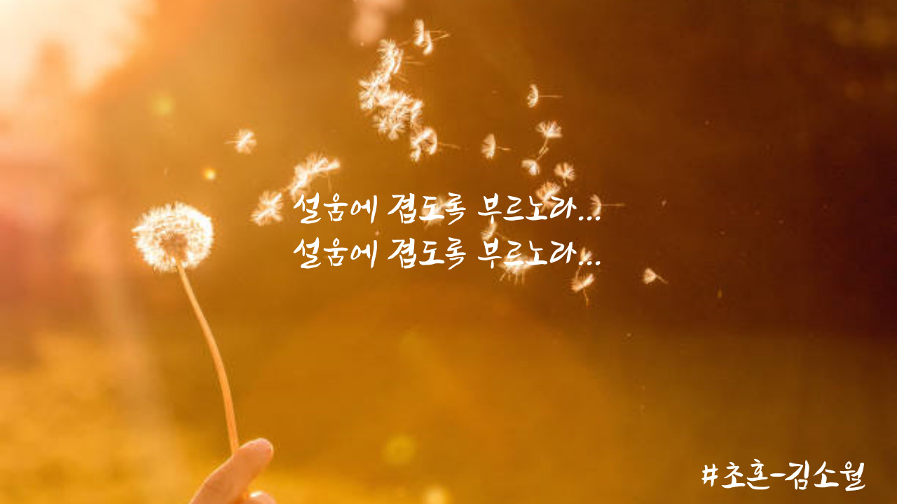초혼 김소월.jpg