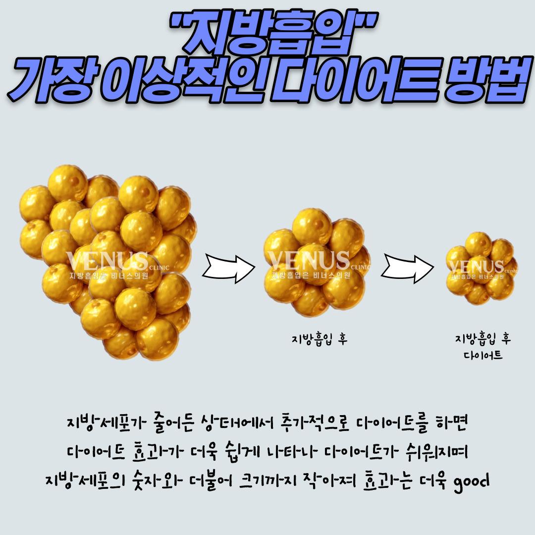 다이어트-004.jpg
