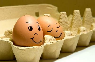 달걀.JPG