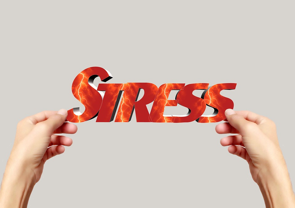 스트레스1.jpg