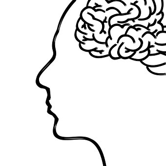 머리.jpg