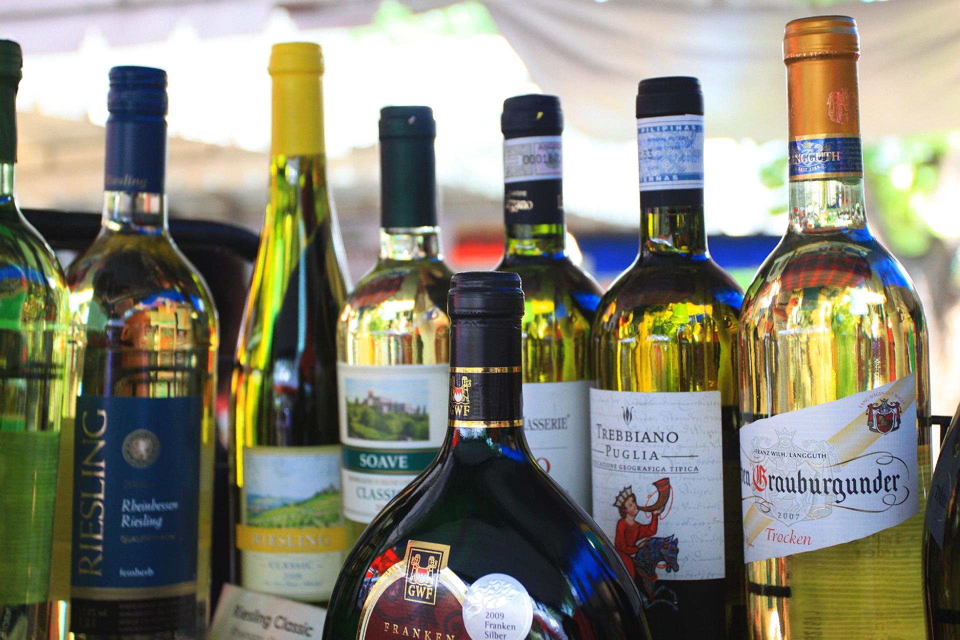 와인 사진