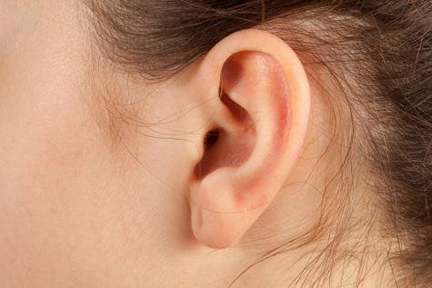 귀.JPG