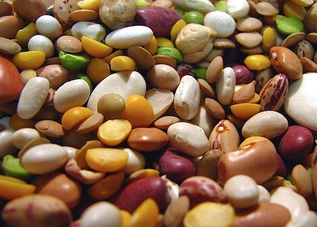 콩.JPG