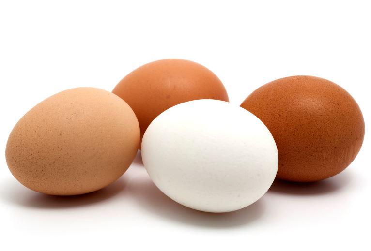 달걀 5.JPG